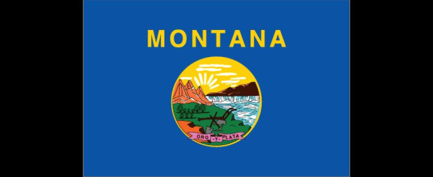 Montana Interactive