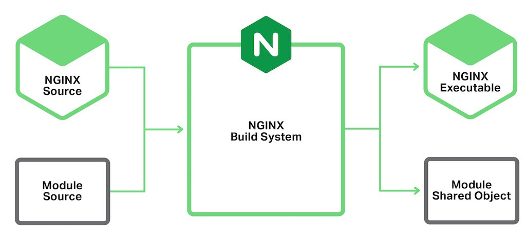 NGINX Dynamic modules are compiled into a separate binary module shared object