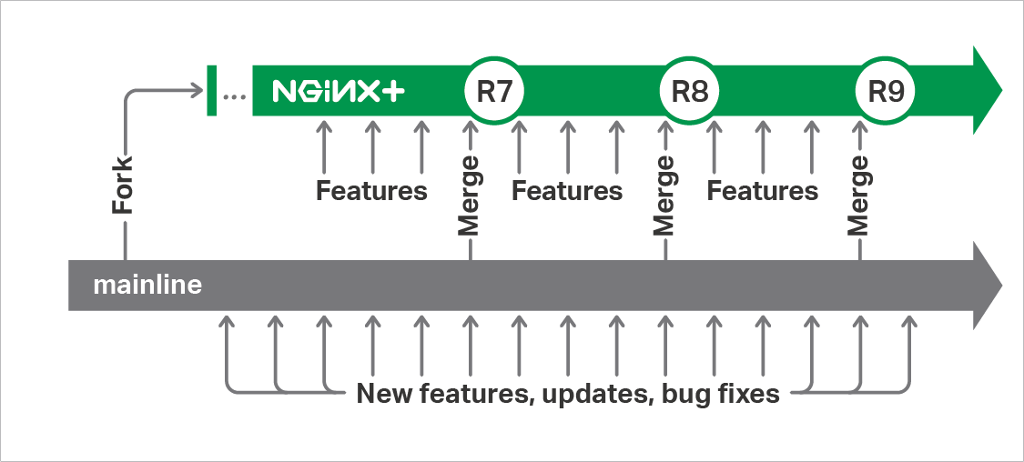 NGINX Plus releases are created by merging in all additions made to the NGINX mainline branch since the previous NGINX Plus release, then adding code for the enterprise-grade features exclusive to NGINX Plus.