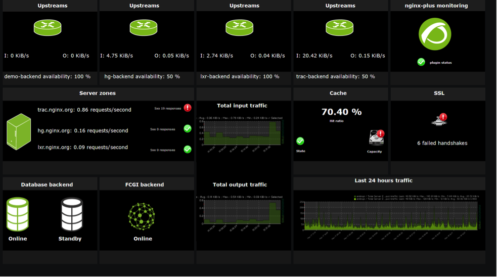 Pandora FMS monitoring screen with NGINX Plus - how to monitor NGINX