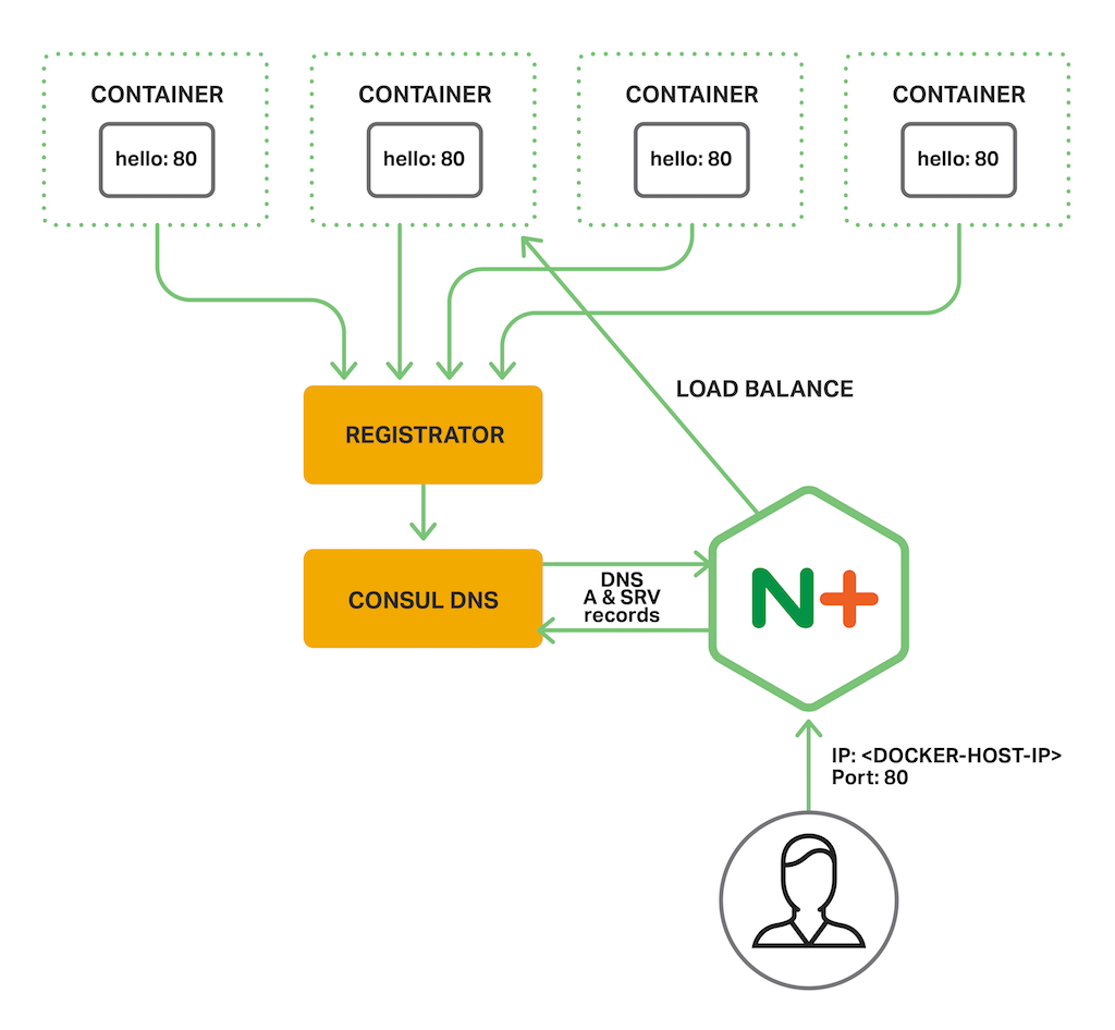 Diagram depicts the setup for the consul-dns-srv-demo from NGINX, Inc. NGINX Plus load balances multiple instances of a containerized backend application, obtaining service discovery information that can be used in a microservices architecture from Consul in the form of DNS 'A' and 'SRV' records.