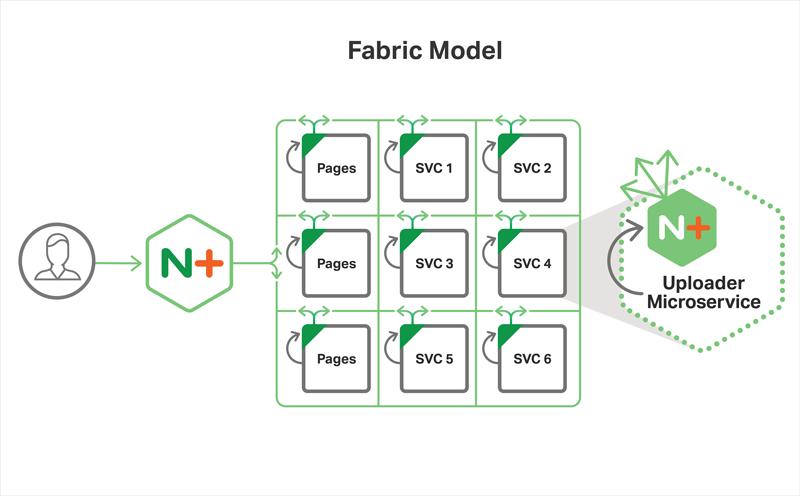 Fabric Model