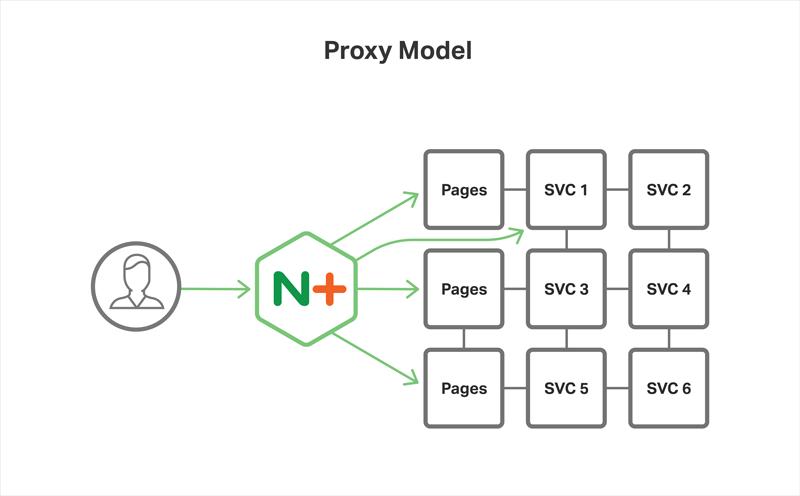 Proxy Model