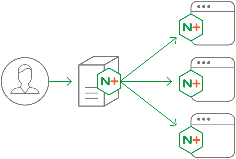 NGINX-Plus-main-diagram-964×648@2x